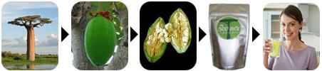 baobab_pulp_powder_baomix_organic